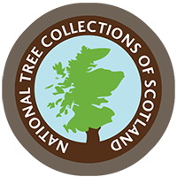 National Tree Collections of Scotland logo