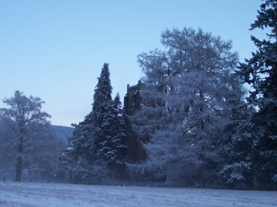 Dunkeld House Tree Trail in winter