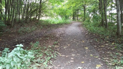 Provost Walk phase two path before upgrade works