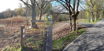Provost Walk phase 2 before and after path improvement works