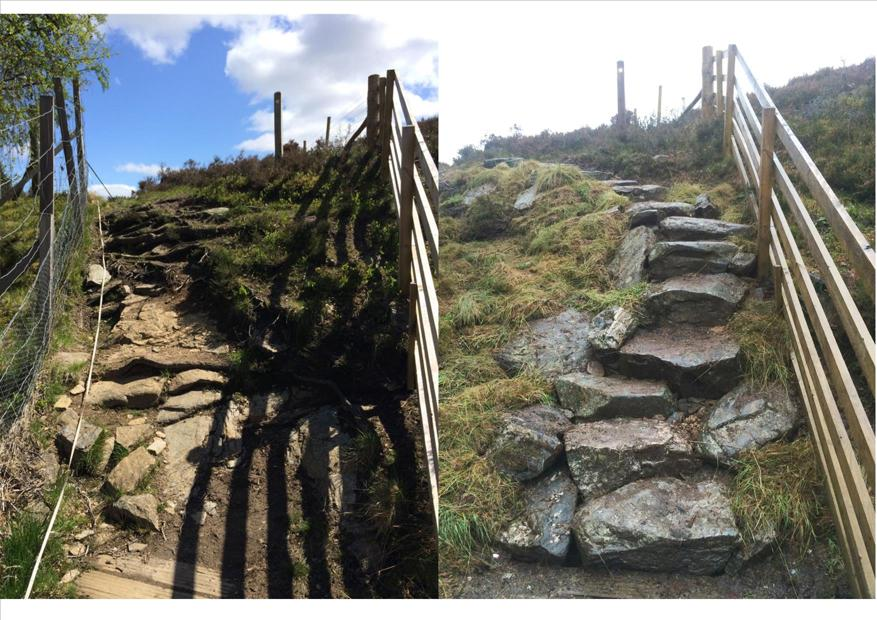 Cateran Trail Steps Repair