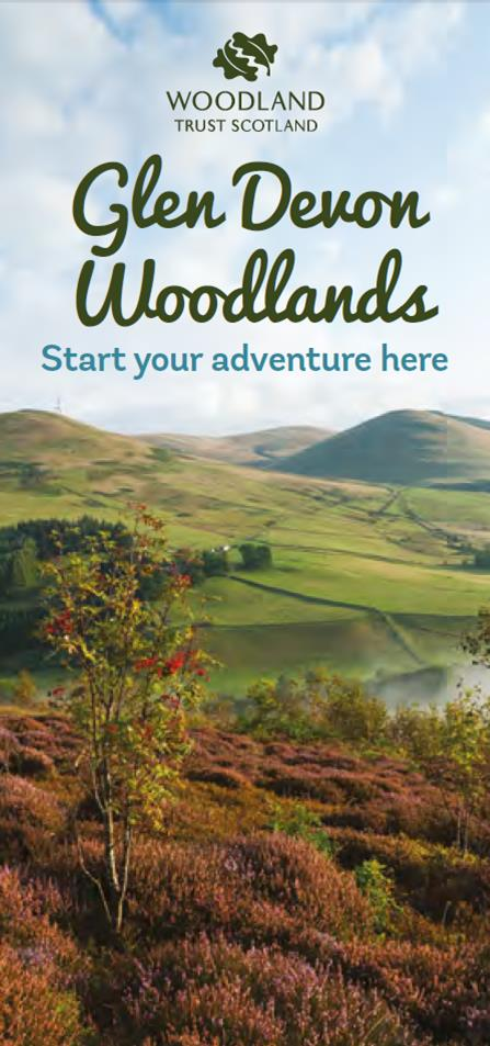Glen Devon Woodlands leaflet