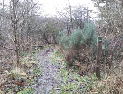 Provost Walk phase 3 section of muddy path before upgrade