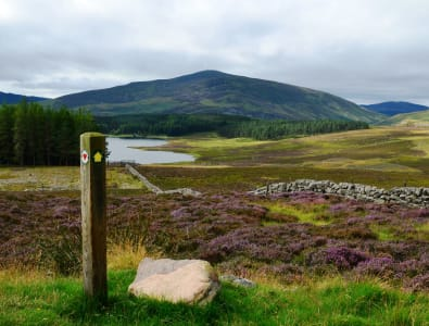 View above Auchintaple Loch on Cateran Trail