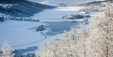 Queens View by Pitlochry in winter