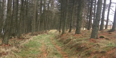 Alyth countryside access gets funding boost