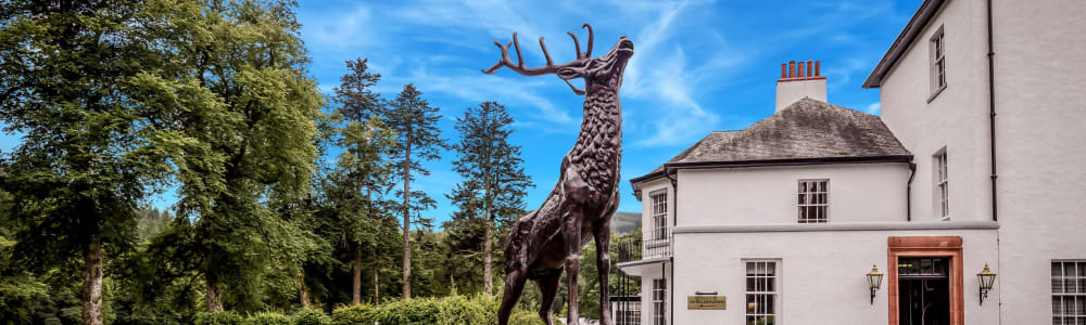 Dunkeld House Hotel reaches £50,000 milestone for Perthshire's trees