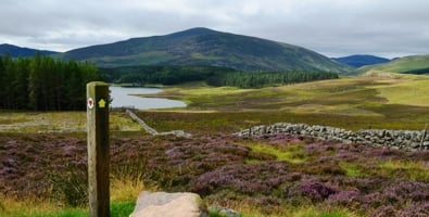 Supporting the Cateran Trail scheme